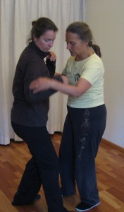 11e Push Hands Intensive Training, juni 2012