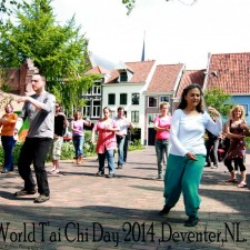 Wereld T'ai Chi Dag 2014