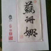190209-wang-ning-certificaat